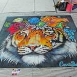 Optimized-C Bennett Tiger